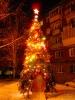 Елка на улице Ядринцева