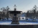 Фонтан. Сквер Кирова. Зима 2010-2011